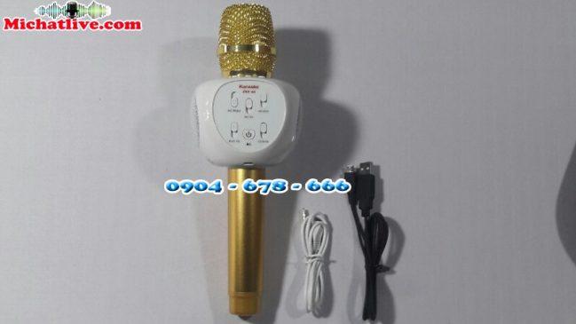 Micro kèm loa bluetooth ZBX-66
