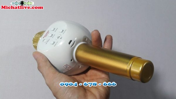 Micro kèm loa bluetooth ZBX-66 - anh 4